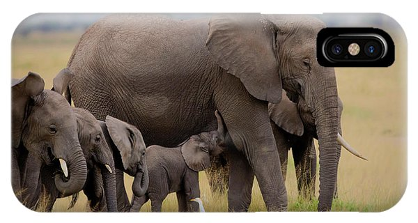 Africa iPhone X Case - Big Family by Young Feng