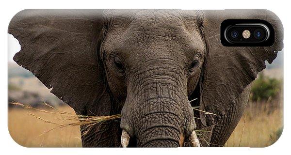 Big Gray IPhone Case