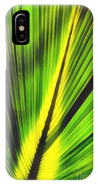 Big Green Palma Leaves  IPhone Case