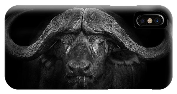 Africa iPhone X Case - Big Horns by Mario Moreno