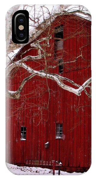 Big Red Bird House IPhone Case