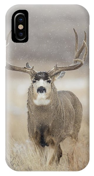 Big Sky On Snowy Day IPhone Case