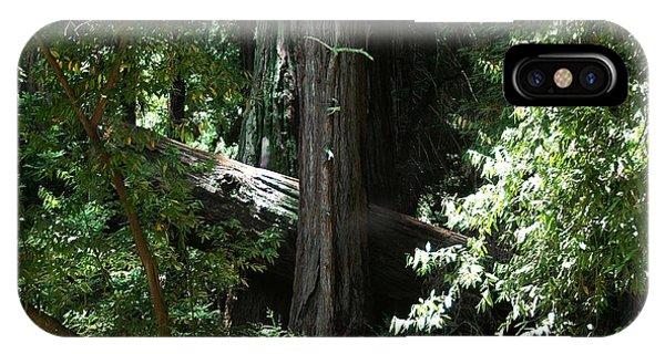 Big Sur Big Trees IPhone Case