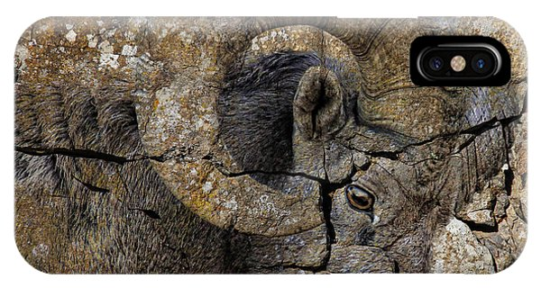 Bighorn Rock Art IPhone Case