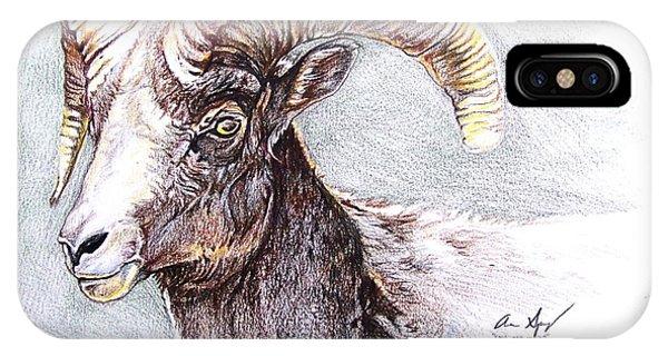 Rocky Mountain Bighorn Sheep iPhone Case - Bighorn Sheep by Aaron Spong