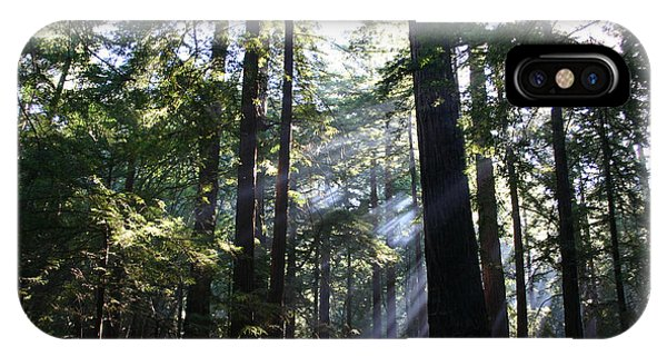 iPhone Case - Bigsur Redwoods by Anthony Forster