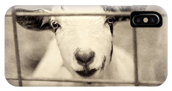 Goat iPhone Case - Billy G by Amy Tyler