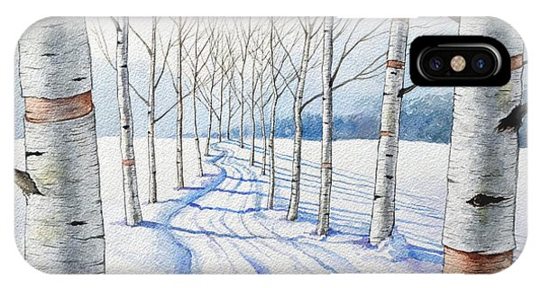 Birch Trees Along The Curvy Road IPhone Case