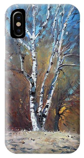 Birch Tree iPhone Case - Birch Trees by Ylli Haruni