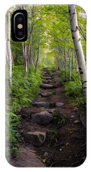 Birch Woods Hike IPhone Case
