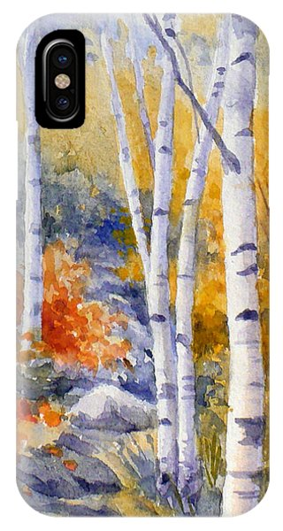 Birches Along The Trail IPhone Case