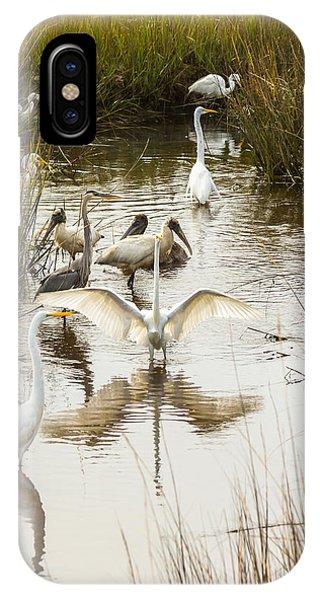 Bird Brunch 2 IPhone Case