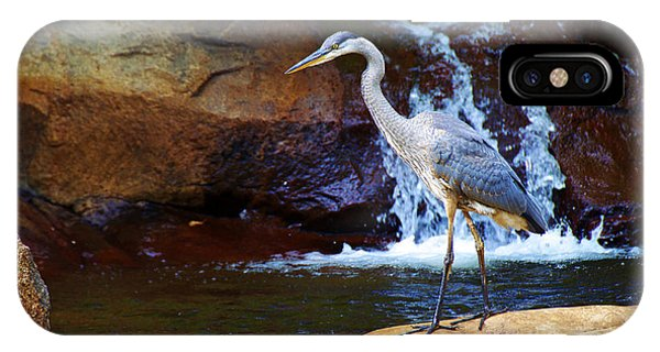 Bird By A Waterfall  IPhone Case