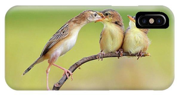 Cute Bird iPhone Case - Bird Feeding Babies by Memensaputra