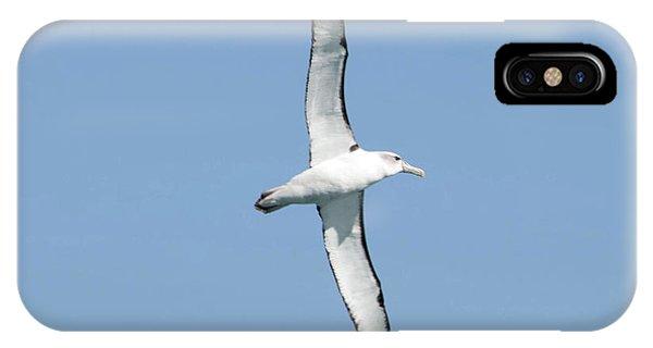 Arbornos Flying In New Zealand IPhone Case
