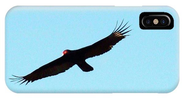 Bird In Flight Phone Case by Van Ness
