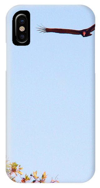 Bird In Pursuit Phone Case by Van Ness