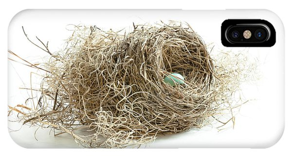 Bird Nest 1 IPhone Case