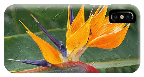 Bird Of Paradice  IPhone Case
