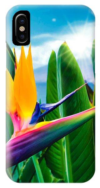 Bird Of Paradise 5 IPhone Case