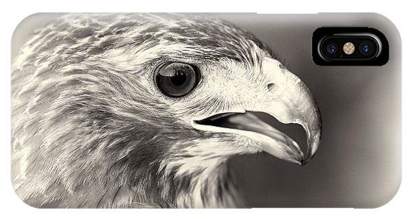 Bird Of Prey IPhone Case