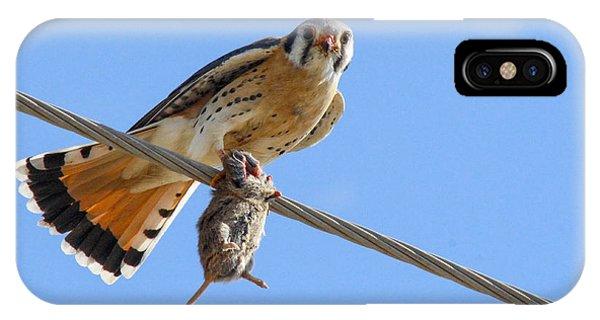 Bird Of Prey Phone Case by Jill Bell