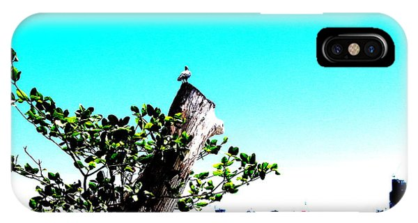 City Scape iPhone Case - Bird On A Log by Michael Kim