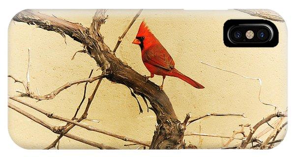 Bird On A Vine IPhone Case