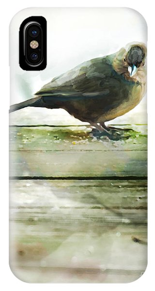 Bird On The Deck IPhone Case
