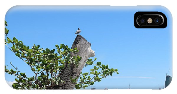 City Scape iPhone Case - Bird Perched On A Tree by Michael Kim