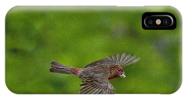 IPhone Case featuring the photograph Bird Soaring With Food In Beak by Dan Friend