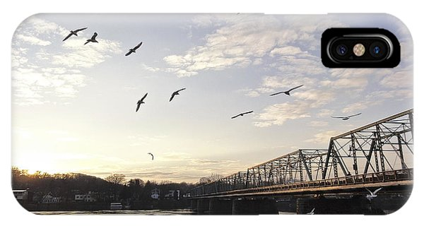 Birds And Bridges IPhone Case