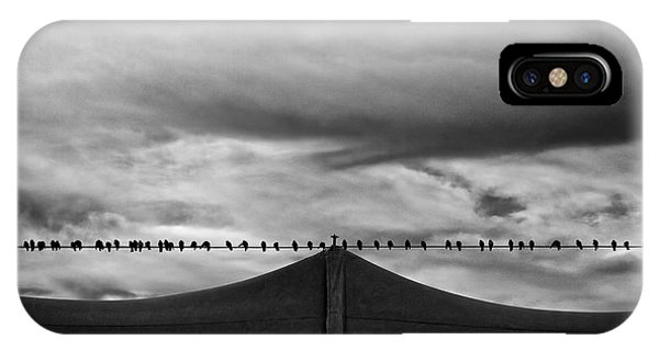 IPhone Case featuring the photograph Birds by Bob Orsillo