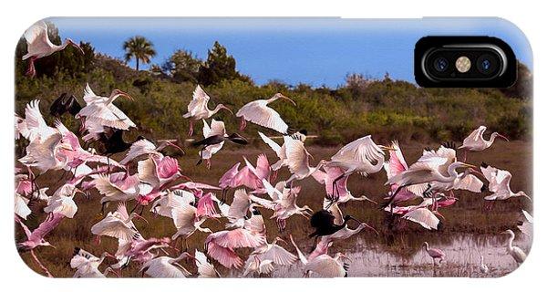 Birds Call To Flight IPhone Case