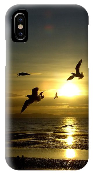 Birds Gathering At Sunset IPhone Case