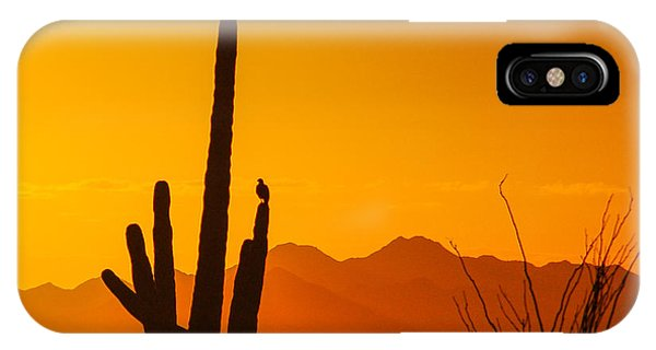 Birds In Silhouette IPhone Case