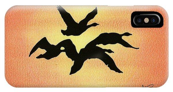 Birds Of Flight IPhone Case