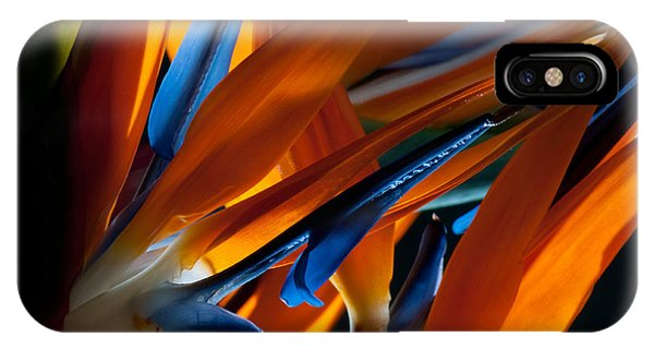 Birds Of Paradise Phone Case by Todd Edson