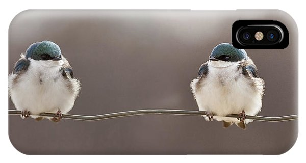 Birds On A Wire Phone Case by Lucie Gagnon