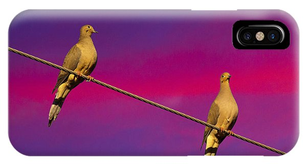 Birds On A Wire IPhone Case