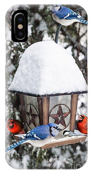 Birds On Bird Feeder In Winter IPhone Case