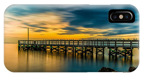 Birds On The Dock IPhone Case
