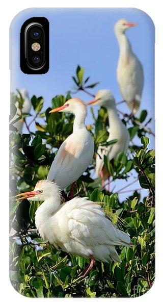 Birds Quartet IPhone Case