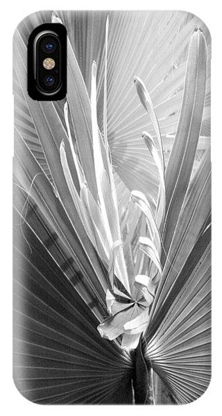 Bismark Palm IPhone Case