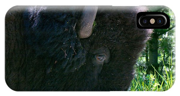 Bison Close Up IPhone Case