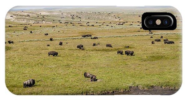 Bison Herd IPhone Case