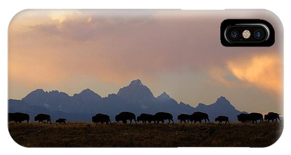 Bison March IPhone Case