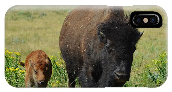 Bison Mother And Calf Phone Case by Dakota Light Photography By Dakota