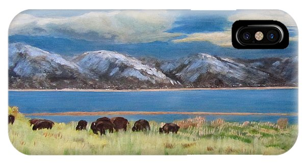 Bison On Antelope Island IPhone Case