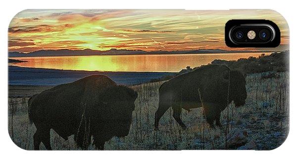 Bison Sunset IPhone Case